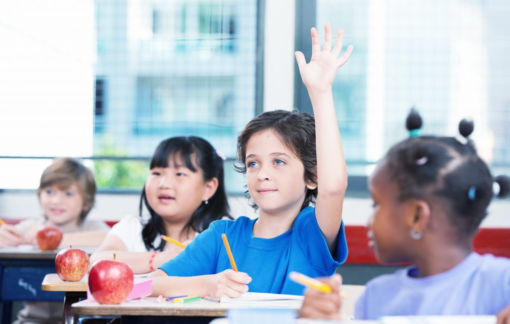 Young boy raising his hand in multiracial primary classroom